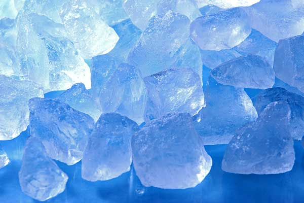 氷 画像2 アップ フリー写真素材「花ざかりの森」